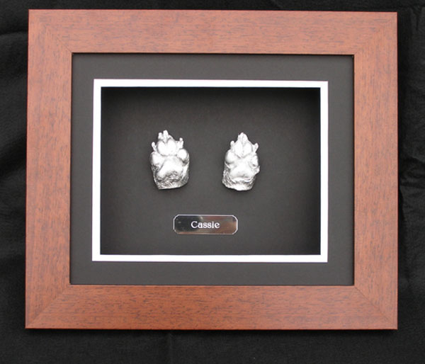 pets at peace pet cremation service paw memorial frames